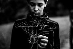 Portrait aux brindilles d'automne (PaxaMik) Tags: portrait portraitnoiretblanc noiretblanc noir blackandwhitephotos black autumn automne brindilles grass herbe contraste n§b main hand chardon