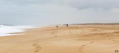 Les pêcheurs.. fisherman... (Didier Gozzo) Tags: sand sea mer landes hossegor ngc sable sky ciel canon outdoor océan beach plage fisherman pêcheurs