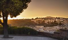 Warm light (Sizun Eye) Tags: warm sunset light fez fes morocco city cityscape medina old oldtown view citysight sizuneye nikond750 nikon50mmf18 unesco worldheritagesite