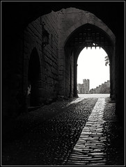 Between the Portcullis. (Jason 87030) Tags: warwick stone castle visit dayout bw bbw black whiye noir blanc warwickshire gateway gatehouse portcullis defence wayin wayout exit entrance enter beware old frame border attraction floor rain weather glisten uk england history historic historical 2018