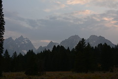 Teaton 0350 (mart.panzer) Tags: teaton yellowstone us usa nationalpark nature scenic top highlights attractions must see awesome best bestof landscape elk bison teton grandteton bear