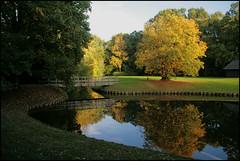 Herfst Spiegeling (TeunisHaveman) Tags: autumn herfst spiegeling ekenstein water reflectie herfstkleuren