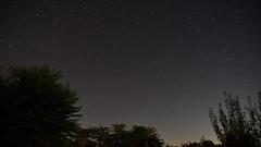 Startrail Timelapse - 2018.10.16. (pavelandras) Tags: nikon d7500 tamron 1750mm dombegyhaz hungary star stars night sky tree startrail timelapse video ngc
