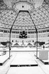 ginastica_doha_21out2018_treinomasc_abelardomendesjr-29 (Ministerio do Esporte) Tags: doha mundialdeginásticaartística qatar ginásticaartística