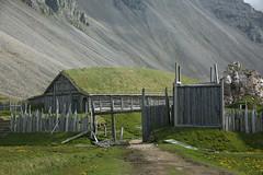 2Q8A2216 (marcella falbo) Tags: höfn iceland horn hornsvík vikingvillage vikingr