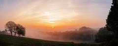Foggy Vennbahnviadukt (Kevin Kistermann) Tags: lrthefader venn vennbahn aachen fog nebel germany deutschland railway bahnstrecke sonne sonnenaufgang sunrise moody yellow