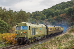 50033_FoleyPark_05_10_18 (chrisbe71) Tags: 50033 d433 glorious ee br vac hoover c50a svr bewdley 2c74