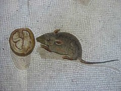 Roman mosaic showing mice eating a nut. Object located in Vatican Museum. (Meme Genie) Tags: art history mice roman