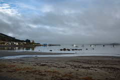 Lots of Seaweed on the Beach Today (Jocey K) Tags: newzealand nikond750 akaora bankspeninsula canterbury hills sea akaroaharbour boats wharf buildings seaweed scene landscape seascape sky mist clouds