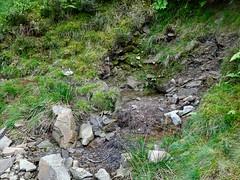 Spring, Quarry, Blaen Bran, Upper Cwmbran 26 September 2018 (Cold War Warrior) Tags: spring cwmbran blaenbran