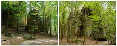 """Auf geht's wieder - nun zum """"Kuhstall""""  ........ (mohnblume2013) Tags: wandern wald grün berge felsen sachsen elbsandsteingebirge"""