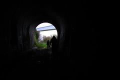 Old disused tunnel in Porto (sensaos) Tags: porto portugal 2016 europe sensaos travel railway tunnel disused urban decay