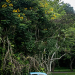 Vinales, Cuba thumbnail