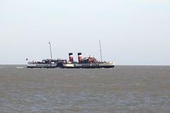PS Waverley (Common Buzzard) Tags: waltononthenaze essex sea water ships waverley paddlesteamer