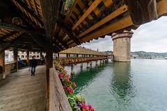 Kapellbrücke in Lucerne Switzerland (pa_cosgrove) Tags: kapellbrücke lucerne switzerland covered bridge water tower river flowers sony a73