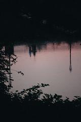 Camminavamo nei riflessi (matteoguidetti) Tags: reflection pink sunset people water acqua riflesso rosa tramonto walking