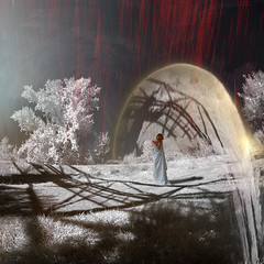 at the gate of shadows (old&timer) Tags: background infrared filtereffect textured composite surreal song4u oldtimer imagery digitalart laszlolocsei