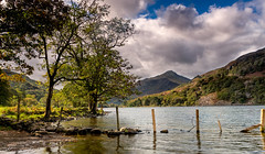 Lake Shore (Mark Palombella Hart) Tags: lake trees snowdonia scenery cymru landscape potd hills photographer light