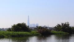 Landmark 81 (Terry Hassan) Tags: saigon landmark81 skyscraper distance river vegetation water hochiminhcity silhouette vietnam