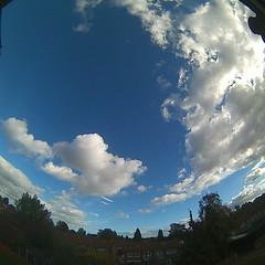 Bloomsky Enschede (October 22, 2018 at 01:58PM) (mybloomsky) Tags: bloomsky weather weer enschede netherlands the nederland weatherstation station camera live livecam cam webcam mybloomsky
