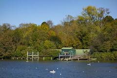 Men's Bathing Pond, Hampstead Heath (London Less Travelled) Tags: uk unitedkingdom city urban britain england london hampstead highgate heath pond bathing pool trees water park