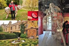 298 2018 birthday trip to Sudeley Castle (Margaret Stranks) Tags: 298365 365days 2018 sudeleycastle winchcombe gloucestershire uk reflection elephant birthday badge knotgarden mirror