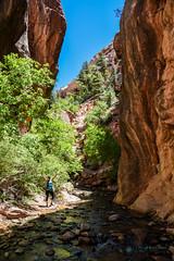 Utah_2018_ (1 of 144) (jasinrodriguez) Tags: zion trekking family narrows subway zionnationalpark nationalparks outdoors