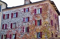 Asti (Waldek P.) Tags: italy langhe piemonte włochy piemont wino wine vineyard winnica barolo nebiolo muscat asti