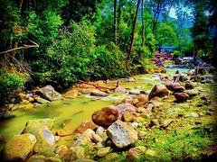 Tanjung Ipoh, Negeri Sembilan https://goo.gl/maps/Qi6Smr2W9VS2 #travel #holiday #traveling #trip #Asian #Malaysia #旅行 #度假 #亞洲 #馬來西亞 #วันหยุด #การเดินทาง #ホリデー #휴일 #여행 #праздник #путешествие #大自然 #nature #河 #River #강 #sungai #川 #река #แม่น้ำ #UluBendul #r (soonlung81) Tags: trip river سفر วันหยุด vacanza fluss flod malaysia путешествие sungai resa vakantie 휴일 馬來西亞 旅行 reise nature แม่น้ำ semester ulubendul asia 여행 asian voyage 大自然 reizen 度假 traveling 강 río urlaub 川 река ホリデー การเดินทาง holiday праздник fiume rivière rivier عطلة 河 vacances fiesta viaggio 亞洲 viaje travel