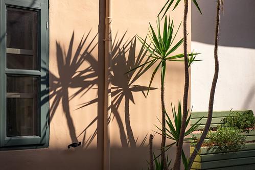 Shadows and Stillness II