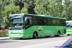 B_7034_01 (buspmi) Tags: elgato iveco