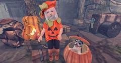Lil' Pumpkin (Emery/Teagan Parker) Tags: maple trunkortreat jian trompe arcade foxy pumpkin halloween autumn fall toddleedoo fittedcute sweet kid adorable