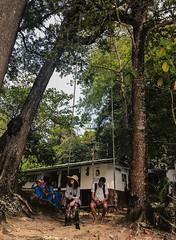 симиланские-острова-similan-islands-таиланд-7877 (travelordiephoto) Tags: similanislands thailand phuket пхукет симиланскиеострова симиланы таиланд lamkaen phangnga th