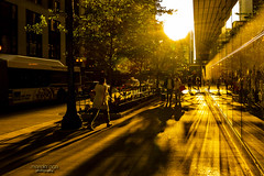 in the light ... (mariola aga) Tags: chicago downtown city street buildings people sun light sunrays shadows reflection golden hue backlight sunset wideangle saariysqualitypictures thegalaxy