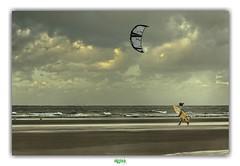 REAP THE WILD WIND (régisa) Tags: ultravox wind vent leffrinckoucke malolesbains dunkirk dunkerque board windsurf windsurfing plage beach estran seaside merdunord