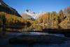 atun a Lai da Palpuogna (Toni_V) Tags: m2409615 rangefinder digitalrangefinder messsucher leicam leica mp typ240 type240 35lux 35mmf14asphfle summiluxm alps alpen hiking wanderung spinaspreda palpuognasee laidapalpuogna laidapalpuegna albula albulatal graubünden grisons grischun bergsee mountainlake herbst atun autumn switzerland schweiz suisse svizzera svizra europe reflections pizela ©toniv 2018 181020 landscape lärchen
