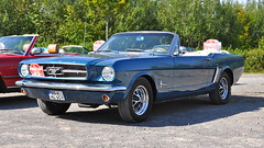 Ford Mustang 289 V8 Convertible I 1965 (Transaxle (alias Toprope)) Tags: 8faves 8favs usa uscar uscars american america amerika americans americancar ford mustang 289 v8 convertible 1965 heritage isernhagen classic classics autos auto antique amazing automobile autostoriche beauty bella beautiful bellamacchina cars car coches coche carros carro clasico clasicos design d90 dreamcar exotic exotics historic hot iconic klassik kraftwagen kraftfahrzeuge kool koool kars legendary legend macchina macchine motorklassik nikon power powerful performance unique retro soul styling toprope voiture vintage voitures veteran veterans vecchio ancienne
