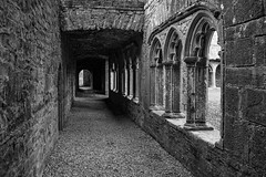 Bective Abbey (Greg Carey) Tags: cloisters cistercian boyne river meath ancient ruins ireland monks braveheart movie monastery corridor