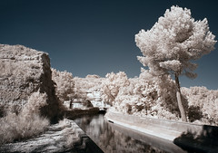 Nowhere (Lolo_) Tags: ir infrared canal marseille aixenprovence arbois plateau pin water eau infrarouge 715nm tunnel