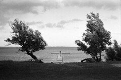 Højvande (holtelars) Tags: asahi pentax spotmatic sp m42 supertakumar takumar 50mm f14 film 35mm analog analogue ilford fp4 ilfordfp4 100iso d76 bw blackandwhite monochrome filmphotography filmforever ishootfilm lars holte home processing jobo atl1500 sletten strand beach denmark danmark