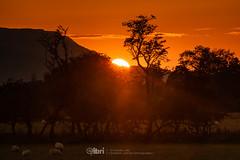 Sunset - 10 Oct 2018 - 35 (ibriphotos) Tags: bluesky stirling sunshine sunset indiansummer wallacemonument autumn stirlingcastle evening goldenhour sky sunsets