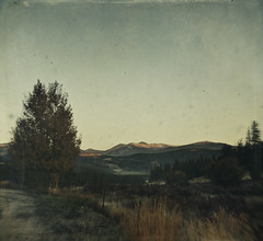 it begins (jssteak) Tags: canon t1i mountain forest trees colorado sunrise fall autumn vintage aged
