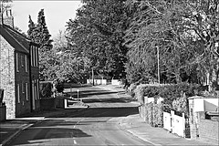 Skidby  Monochrome (brianarchie65) Tags: skidy eastyorkshire eastridingofyorkshire yorkshirecameraramblers yorkshireblackandwhite road street trees hedges cars houses church roads blackandwhite blackandwhitephotos blackandwhitephoto blackandwhitephotography blackwhite123 blackwhiterealms flickrunofficial flickr flickrcentral flickruk flickrinternational ukflickr unlimitedphotos ngc canoneos600d geotagged brianarchie65
