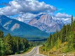 Alberta HWY 40 (Per@vicbcca) Tags: sony rx1 dscrx1 fullframe rving2018 tourist tourism travel alberta canadianrockies