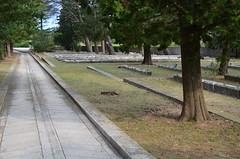 Kampor Concentration Camp [Kampor - 25 August 2018] (Doc. Ing.) Tags: 2018 rab croatia otokrab rabisland happyisland kvarner kvarnergulf summer mediterraneansea adriatic cemetery concentrationcamp kampor nikond5100