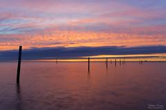 Just Before Sunrise (Johan Konz) Tags: sunrise mood fishingpole water waterscape seascape dike marken markermeer netherlands outdoor le longexposure nikon d7500 sea sky pink reflection light cloud serenity dusk