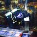 Newport Aquarium 06-15-2018 50 - SCUBA Diver