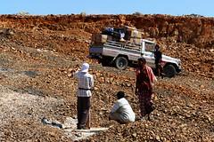 Transporter (Obachi) Tags: yemen socotra work soqotra flickr jemen