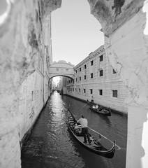 Una storia tanto inquietante per un panorama tanto affascinante. Sospiri. (andreasambo) Tags: follow like love life beautiful samyang canon bridge venice sanmarco travel italia venezia sospiri