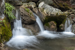 One more from Limekiln (Patrick Dirlam) Tags: trips limekilnstatepark bigsur waterfall